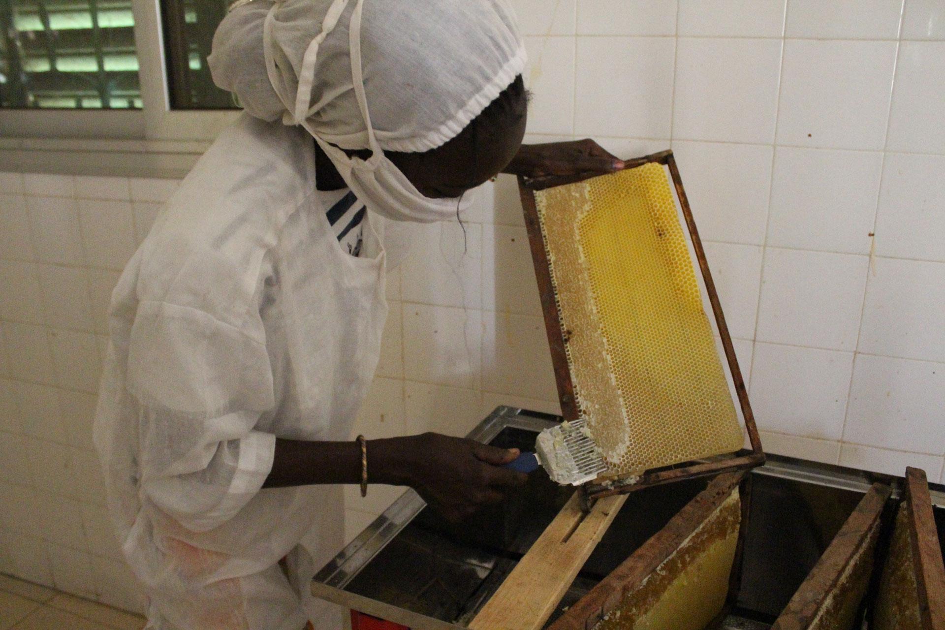Socodevi - Femme apicultrice