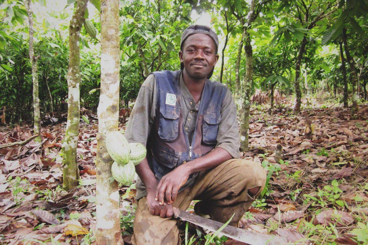 Cacao Livehood