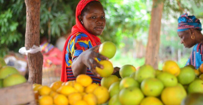 Résilience face au climat : aider les petits exploitants agricoles