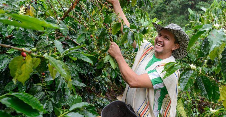 En rafale: 5 réussites en Colombie