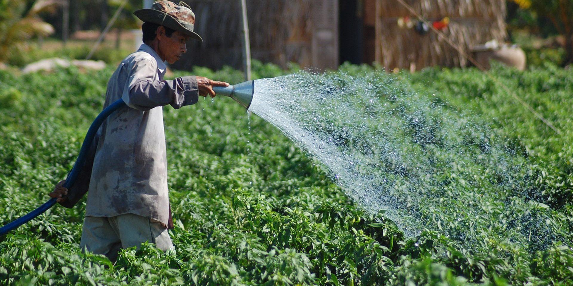 SOCODEVI est engagée pour l'environnement et sur les enjeux des changements climatiques